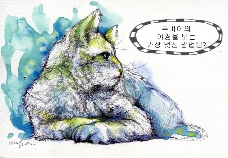 150116_Cat