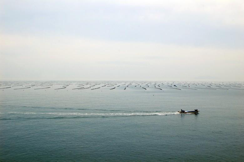 청산도슬로우걷기축제_목섬 (63)