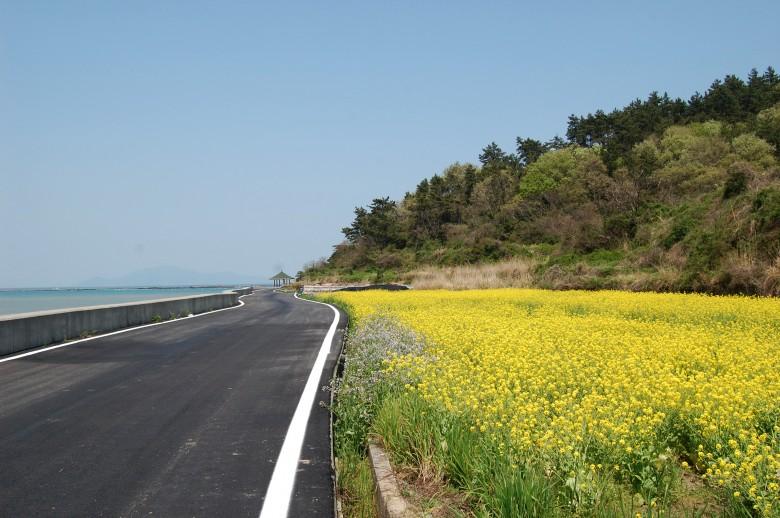 청산도슬로우걷기축제_목섬 (85)