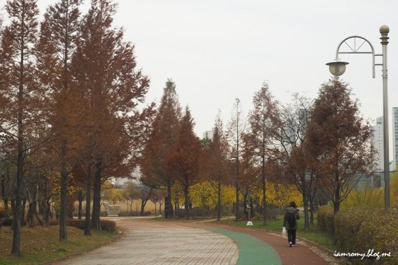 안산호수공원_004
