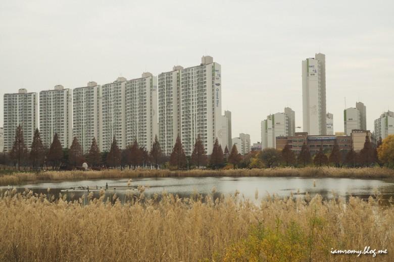 안산호수공원_012