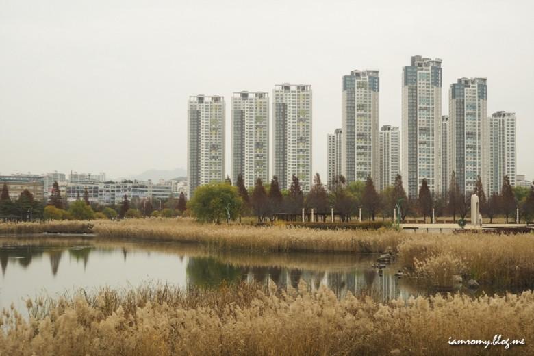 안산호수공원_017