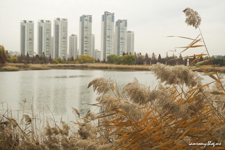 안산호수공원_018