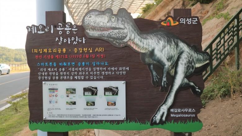 의성 제오리 공룡 발자국 화석 산지_이유미2