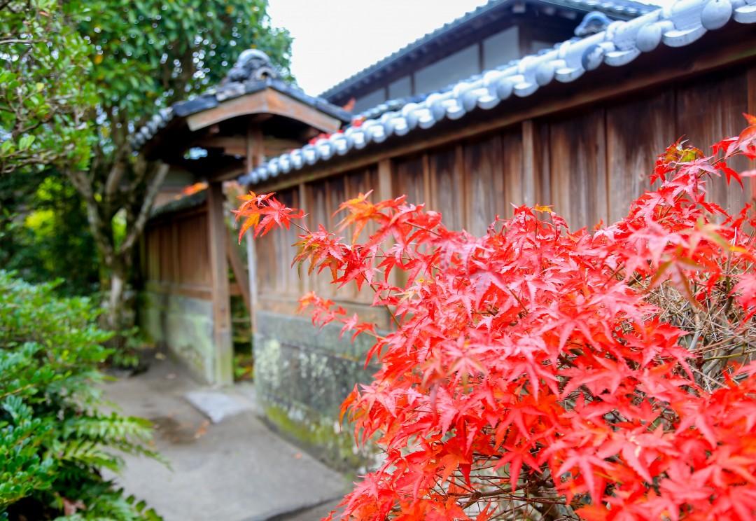 가고시마_여행코스_(69)_72513625.jpg