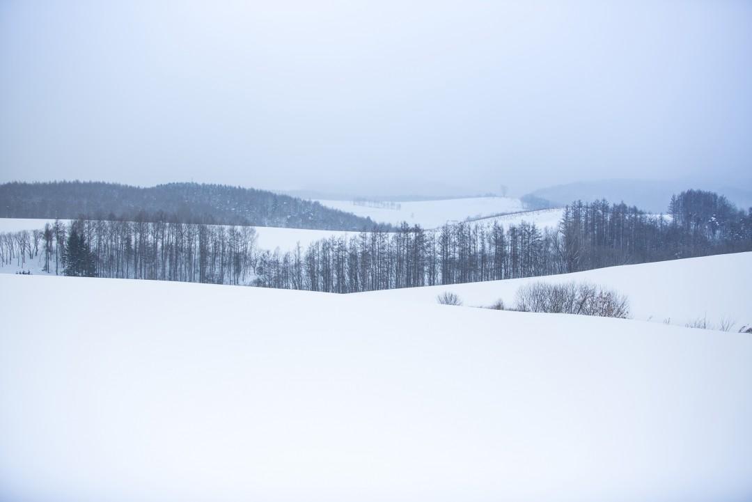 홋카이도021_76620063.jpg
